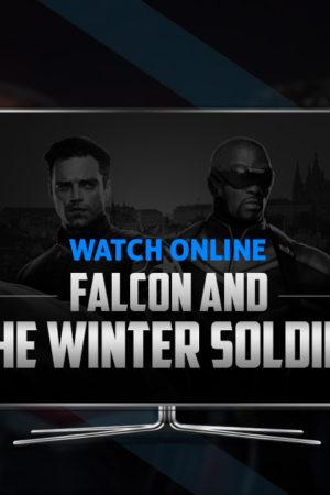 Falcon-banner